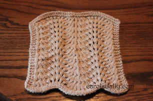 Feather and Fan Washcloth
