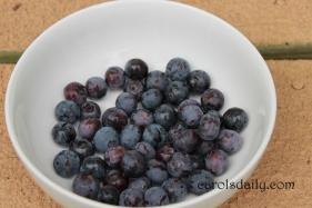 Blueberries